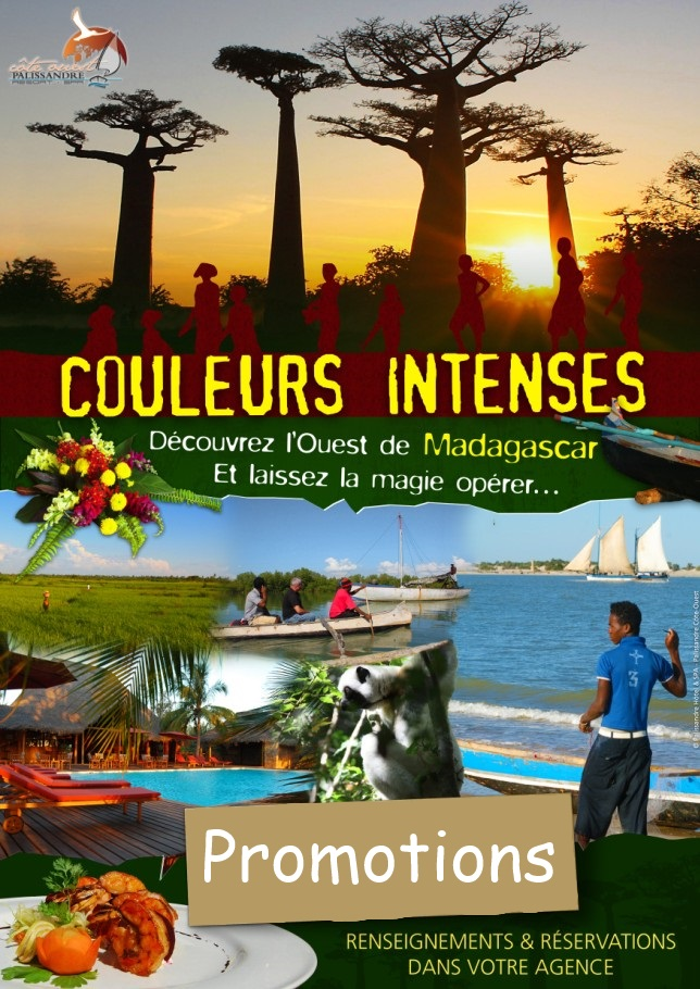 color-intense circuit-coteouest-Rosewood